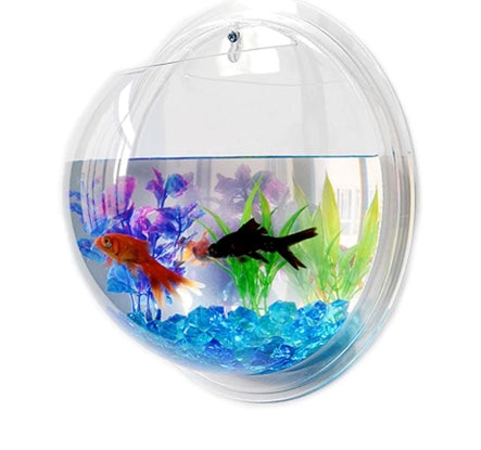 Cute wall acrylic fish bowl