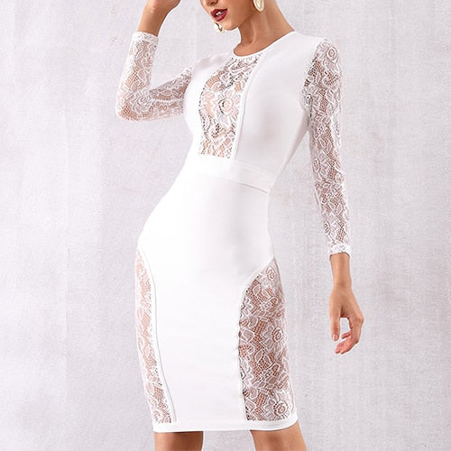 Body Con Lace Party Dress