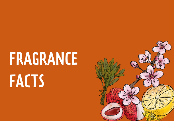 Fun Facts about how fragrances trigger memories