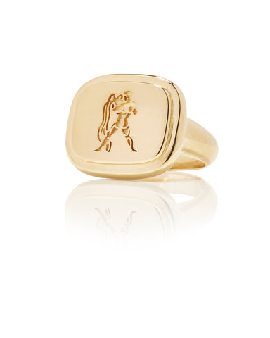 Aquarius Zodiac Ring - Bianca Pratt Jewelry