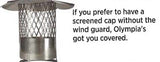 Forever Flex Quick Cap w/ Screen and NO Wind Guard - Chimney Liner