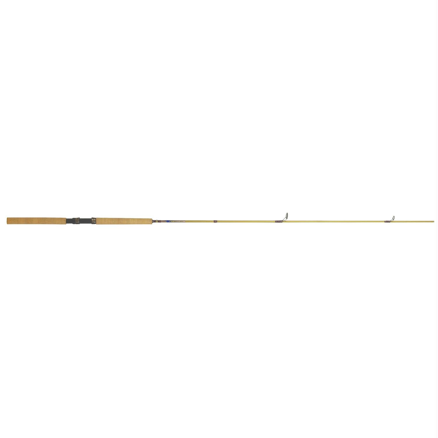 BnM Bucks Gold Jig Pole 10 foot 2 Piece - Survival Camping Pro
