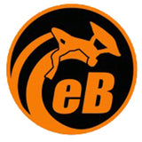 "eBodyboarding.com 6"" Eclipse Sticker - Orange"