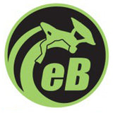 "eBodyboarding.com 6"" Eclipse Sticker - Green"