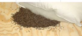 ORGANIC BUCKWHEAT HULL PILLOWS