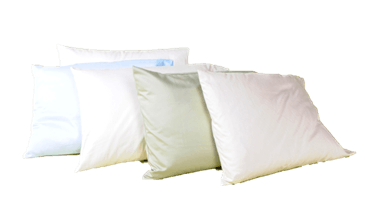 100% Organic Buckwheat l w/zip Pillows