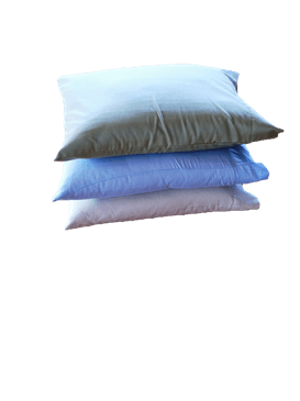 Organic Cotton Sleep Pillows w/zip