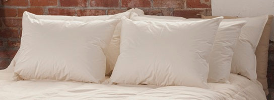 WILDWOOD PILLOWS - 800 FILL