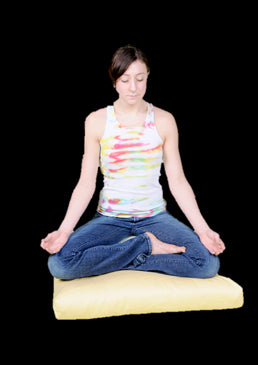 Zabuton Meditation Pillow Covers only in 100% Organic Cotton Barrier Cloth Fabric