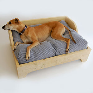 Which Are The Best Dog Beds?
