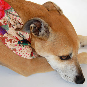 Indian Floral Kantha Quilted Dog Bandana
