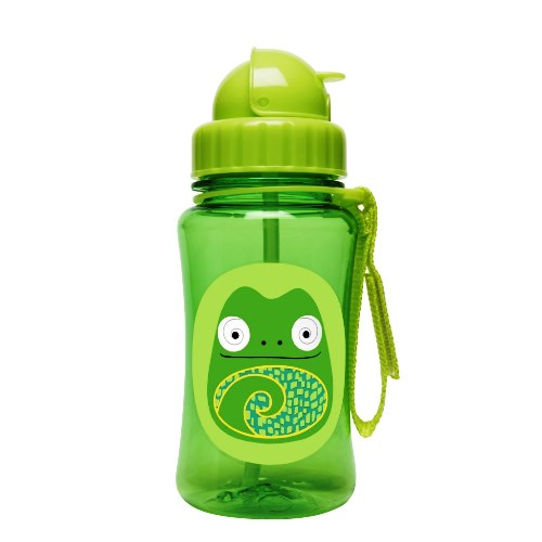 Skip Hop Straw Bottle Chameleon