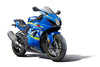 EP Suzuki GSX-R1000R No Drill Crash Protection 2017+