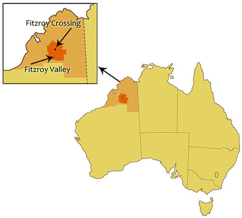 Fitzroy Valley Map