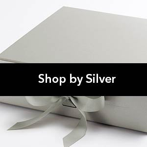Shop by Silver