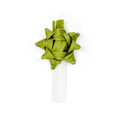 Bow Bag Seals - Pistachio (Pack of 60)