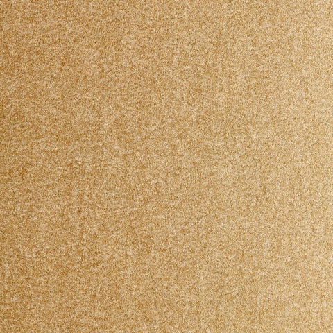Gift Wrap Sheets - Pearlescent Pale Gold (250)