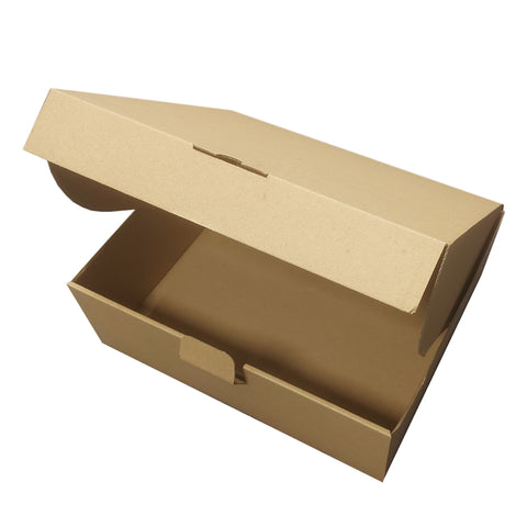 Plain Natural Kraft Postal Outer boxes, Large