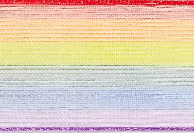 Rainbow Organza Ribbon cut to 80CM (24 pieces)