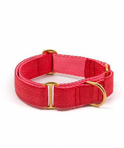 BROTT Barcelona | COLLARS & LEASHES (Pure Collection) (from bottles to your dogs collar)