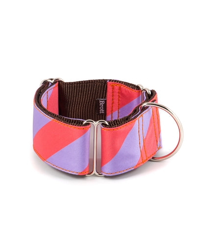BROTT Barcelona |  WIDE MARTINGALE COLLARS (Greyhounds, Whippets & All Dogs, )
