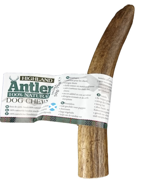 🦌Highland Antlers Extra - Haste de Veado - Small