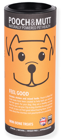 Tubo Snacks FEEL GOOD (BEM ESTAR) ÚLTIMAS UNIDADES!!