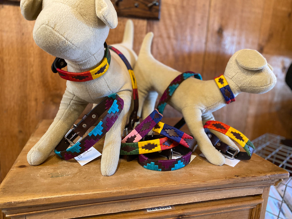 Colorful Dog Collars by Gaucho Goods
