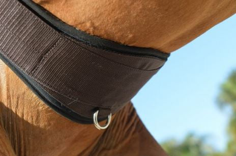 Equifit Essential Schooling Girth