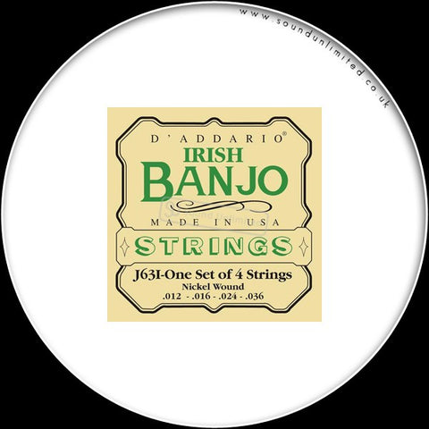 DAddario J63i Irish Tenor Banjo, Nickel Wound