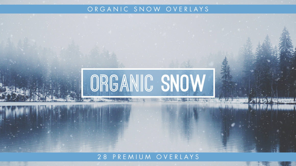 Organic Snow Overlays