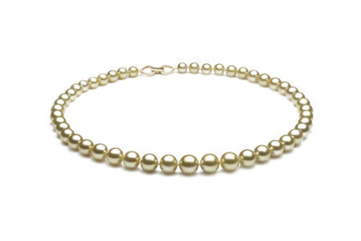 Champagne South Sea Gold Necklace - Kyllonen