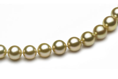 Close up South Sea Gold Pearl Necklace - Kyllonen