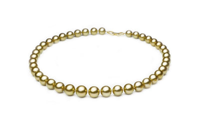 Superior Gold South Sea Gold Necklace - Kyllonen