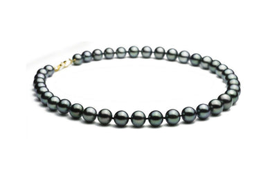 AAA Blue-Green Black Pearl Strand