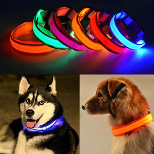GLOW IN THE DARK LED DOG SAFETY COLLAR - Vibe Plaza FREE Shipping Flash Sale Limited Stock