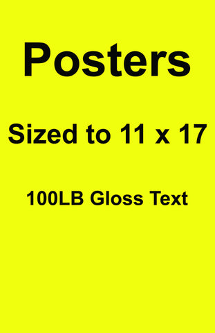 Posters Qty 100 11 X 17 Prints Full Color Front Side (Cosplay Size)