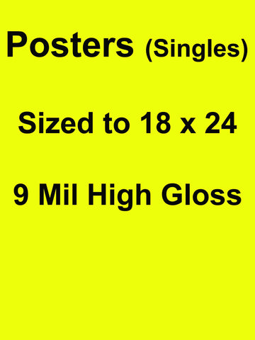 Posters (Single) QTY 5 18 X 24 Full Color Front Side