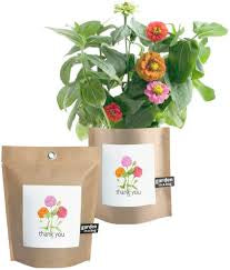Garden In a Bag Kit