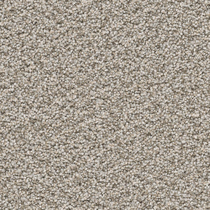 Sensational Carpet - Clam Shell