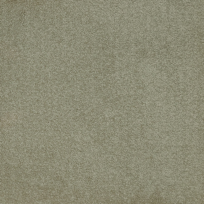 Home Run Carpet - Special Beige