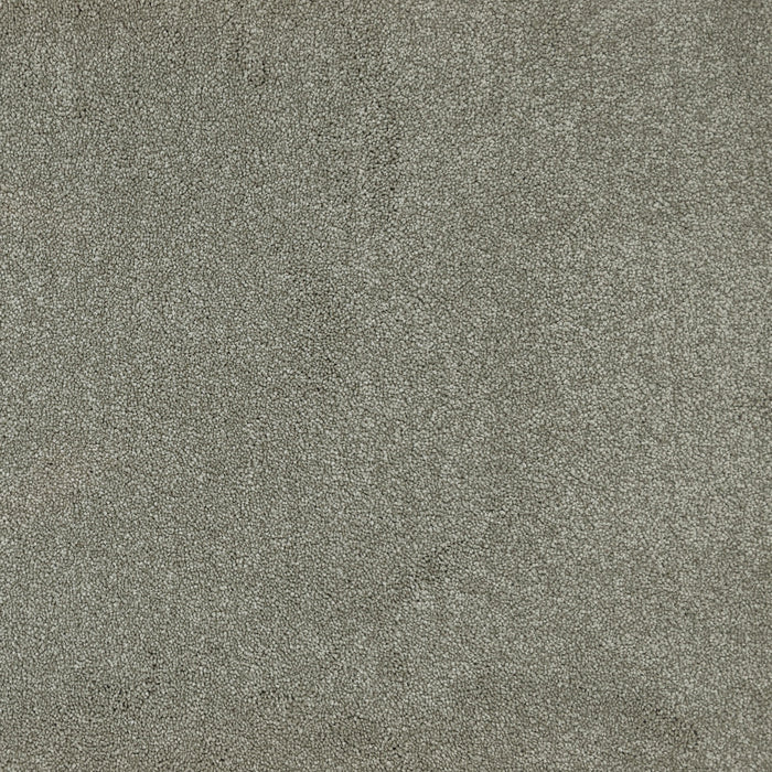Home Run Carpet - Taupe