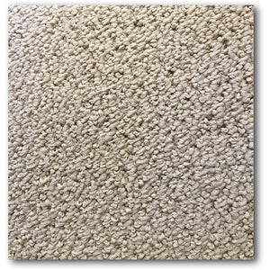 Solid Point ZL Berber Carpet - White Suede
