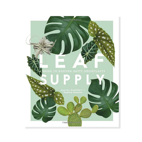 Leaf Supply - A Guide To Keeping House Plants