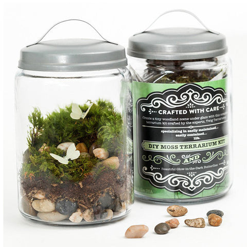 Enchanted Forest Terrarium Kit - City Bird