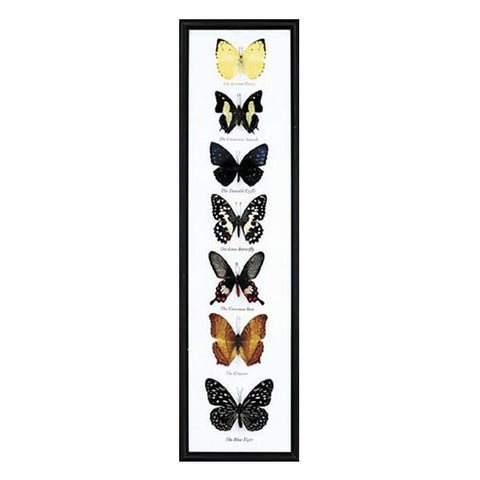7-piece  Vertical Butterfly Frame - City Bird