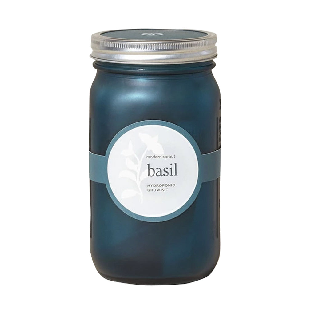 Basil Garden Jar - City Bird