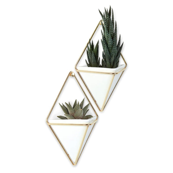 Brass and Ceramic Wall Planter - City Bird