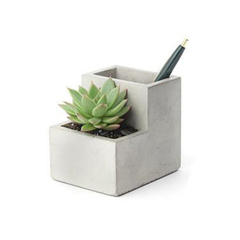 Concrete Desk Planter - City Bird