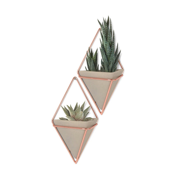 Copper and Concrete Wall Planter - City Bird